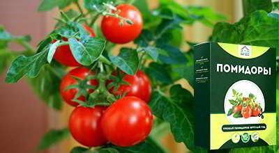 Мини ферма помидоры