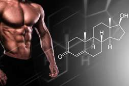 Состав Ash be Forte повышает уровень тестостерона.